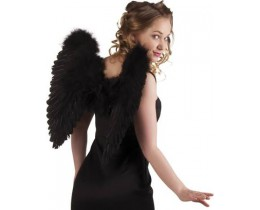Wings zwart