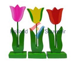 Tulp plat op voet