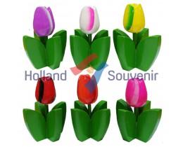 Houten Tulp met blad