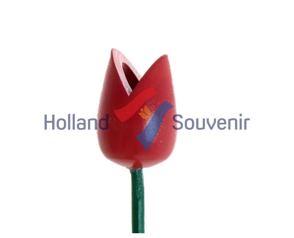 Tulp rood 24